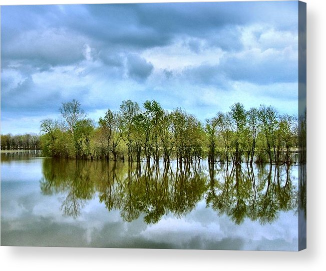 Spring Acrylic Print featuring the photograph Reflections Of Spring by Julie Dant