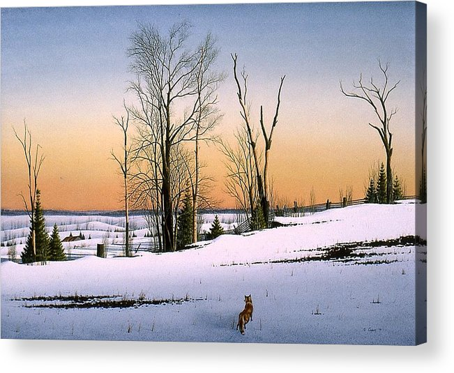 Nature Acrylic Print featuring the painting The Fox by Conrad Mieschke