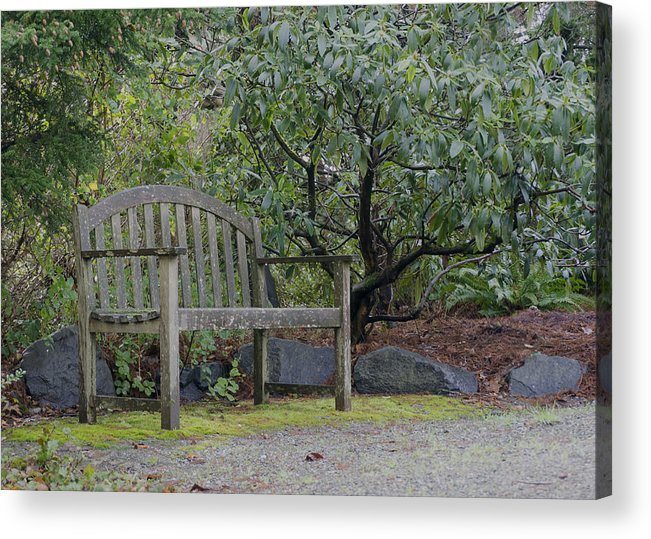 Acrylic Print featuring the photograph Tranquility by Cathy Anderson