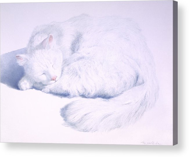 Animal Acrylic Print featuring the painting White On White by Tom Wooldridge
