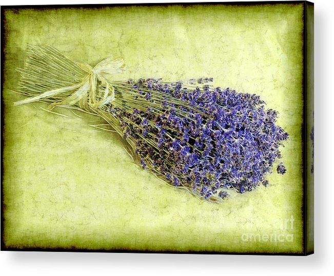 Lavender Acrylic Print featuring the photograph A Spray Of Lavender by Judi Bagwell