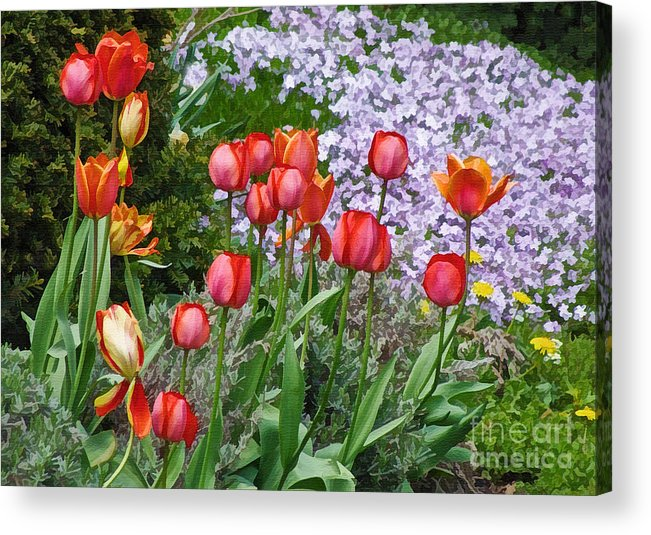 Floral Acrylic Print featuring the photograph A Spring Feast Of Colours by Gerda Grice