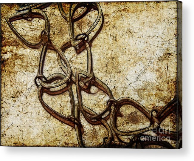 Chain Acrylic Print featuring the photograph Chain Links by Judi Bagwell