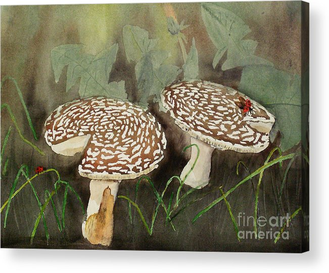 Toadstool Acrylic Print featuring the painting Come Fly With Me by Rob Ladely