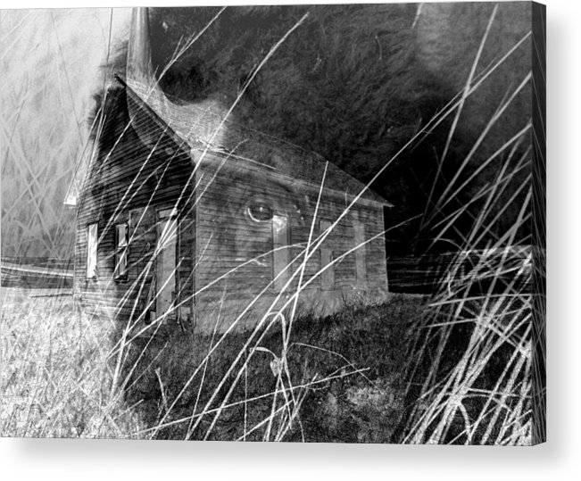 Bison Acrylic Print featuring the photograph Land That Time Forgot by Rick Rauzi