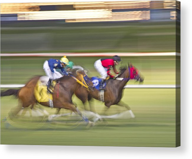 Horse Acrylic Print featuring the photograph Love Of The Sport by Betsy Knapp