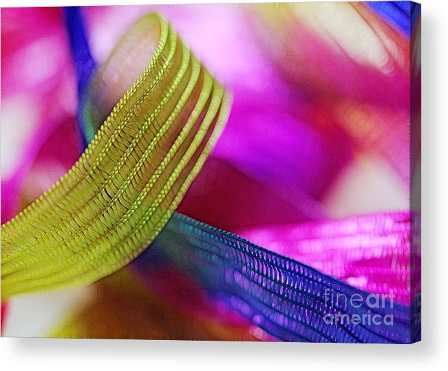 Green Acrylic Print featuring the photograph Party Ribbons by Judi Bagwell