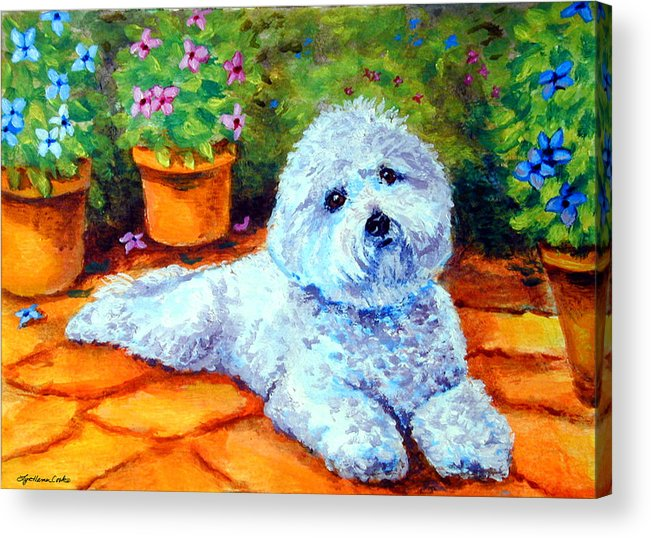Bichon Frise Acrylic Print featuring the painting Patio Pal - Bichon Frise by Lyn Cook
