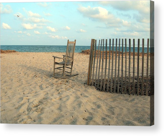 Beach Acrylic Print featuring the photograph Seagull by Skip Willits