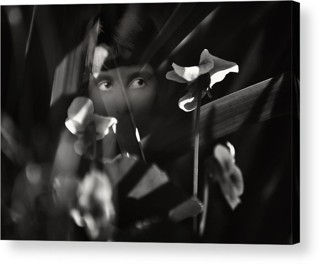 Woman Acrylic Print featuring the photograph Shrinking Violet by Rebecca Sherman