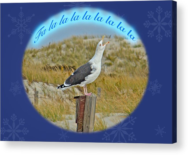 Christmas Acrylic Print featuring the photograph Singing Seagull Christmas Card by Mother Nature