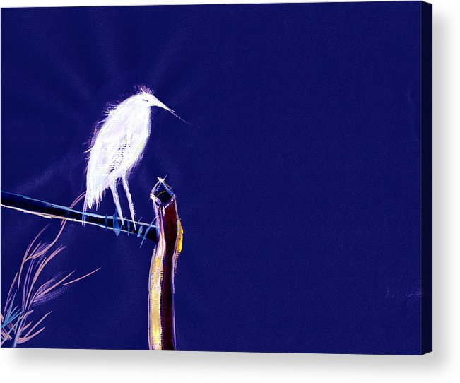 Bird Acrylic Print featuring the painting White Egret by Anil Nene