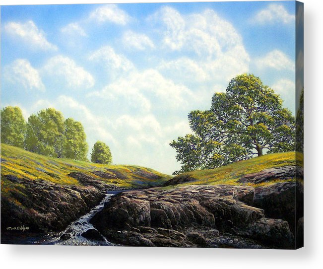 Landscape Acrylic Print featuring the painting Flowering Meadow by Frank Wilson