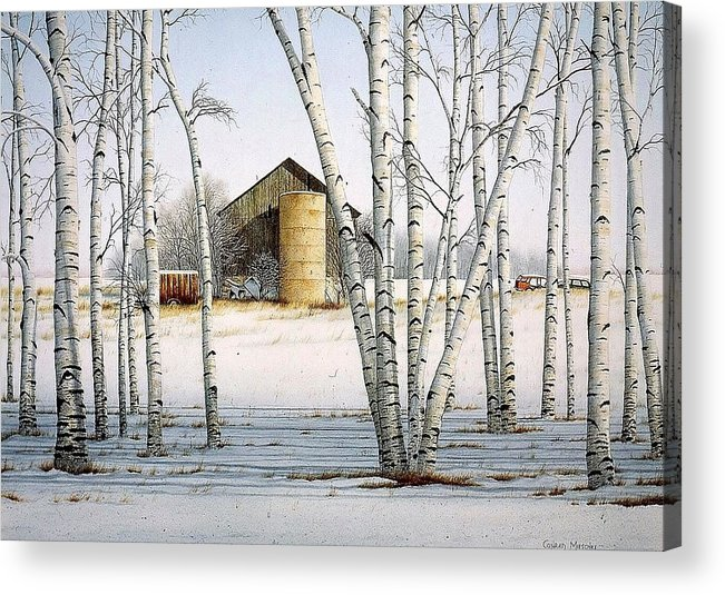 Rural Acrylic Print featuring the painting A Cluster Of Birch by Conrad Mieschke