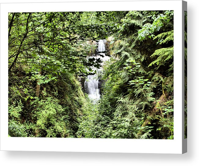 Waterfall Acrylic Print featuring the photograph A Secret Place by J D Banks