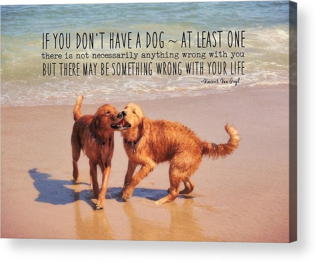 Dog Acrylic Print featuring the photograph Best Buds Quote by JAMART Photography
