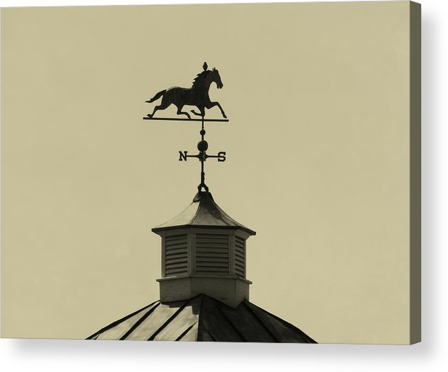 Barn Acrylic Print featuring the photograph Bird Direction by JAMART Photography