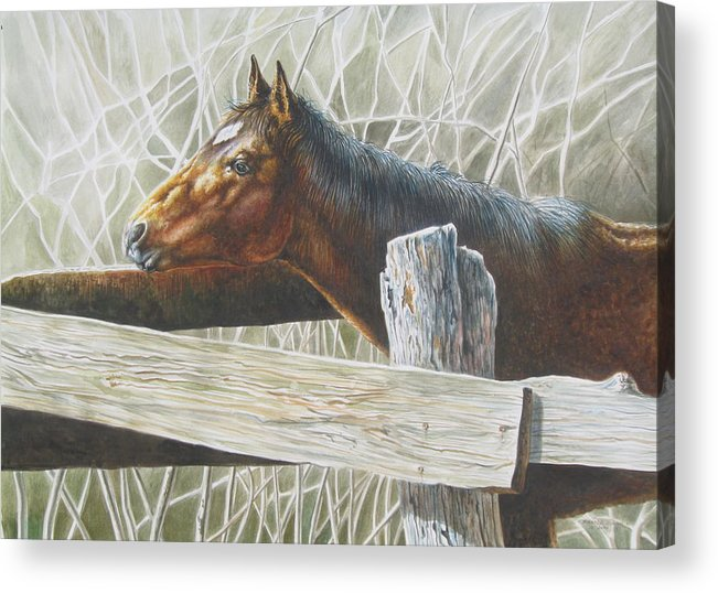 Figurative Acrylic Print featuring the painting Brownie by Arnold Hurley