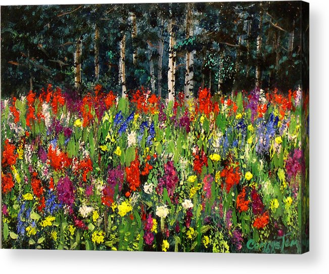 A Painting A Day Acrylic Print featuring the painting Colorado Rockies Wildflowers by Connie Tom