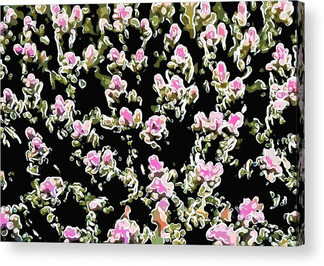 Starfish Acrylic Print featuring the painting Coral Spawning by Lanjee Chee