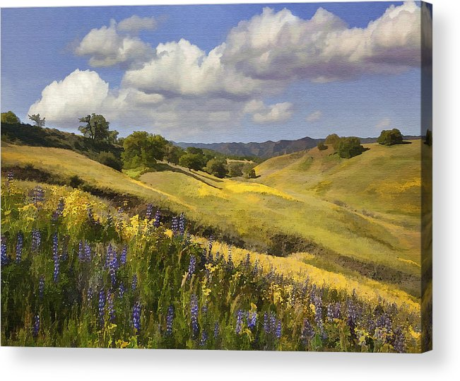 Lupine Acrylic Print featuring the digital art Cottonwood Canyon by Sharon Foster