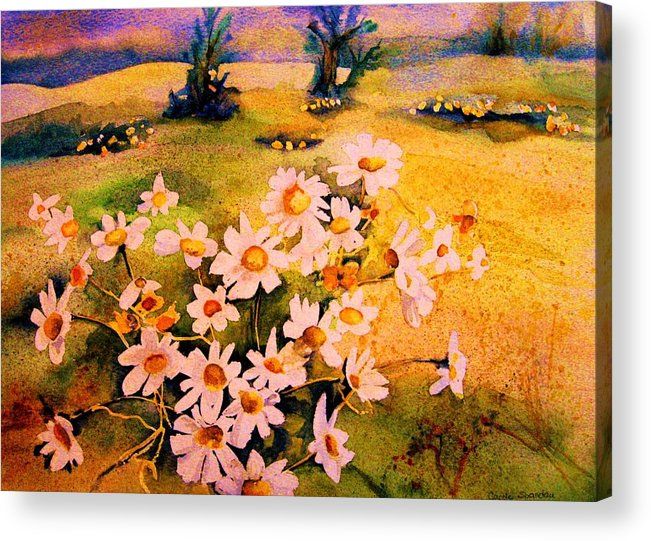 Daisies Acrylic Print featuring the painting Daisies In The Sun by Carole Spandau