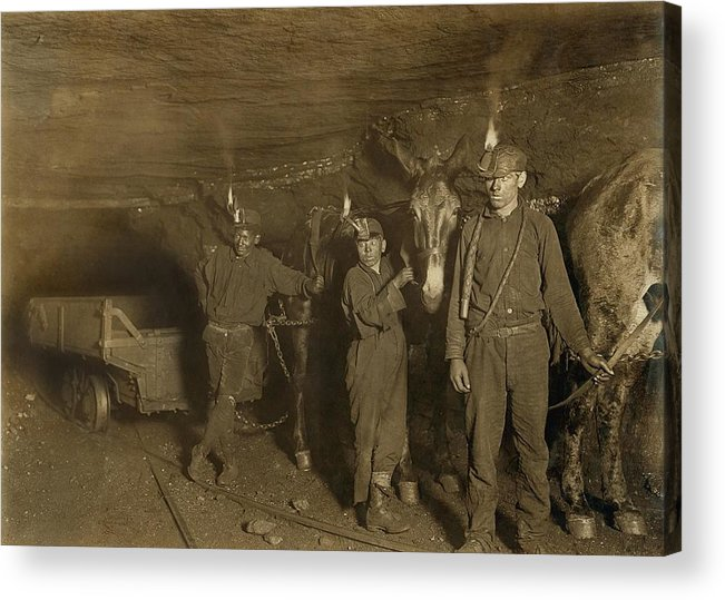 History Acrylic Print featuring the photograph Drivers And Mules With Young Laborers by Everett