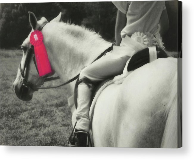 Horse Acrylic Print featuring the photograph First Show Red by JAMART Photography
