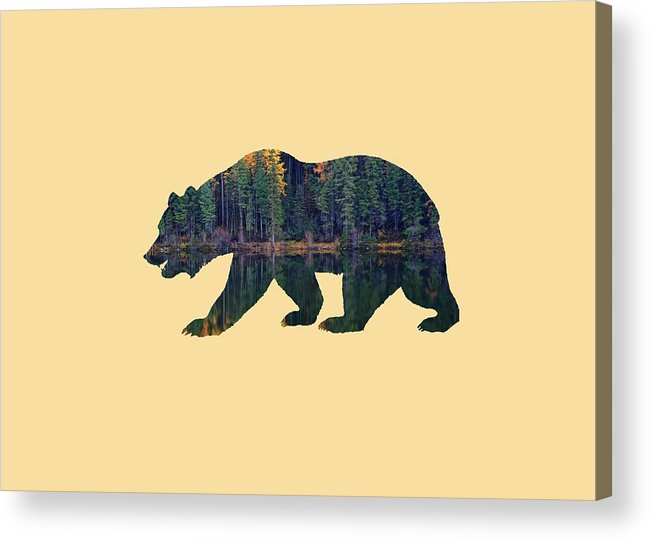 Forest Acrylic Print featuring the photograph Forest Bear by Whispering Peaks Photography