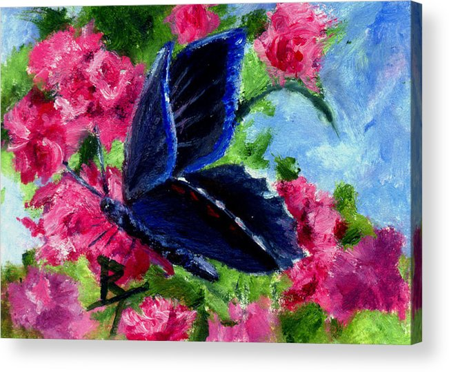Butterfly Acrylic Print featuring the painting Glory Aceo by Brenda Thour