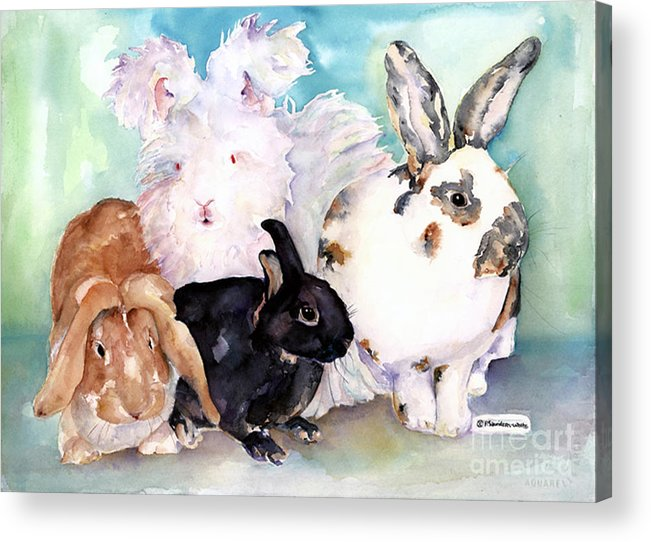 Animal Artwork Acrylic Print featuring the painting Good Hare Day by Pat Saunders-White