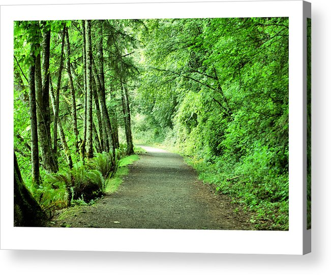 Green Acrylic Print featuring the photograph Green Path by J D Banks