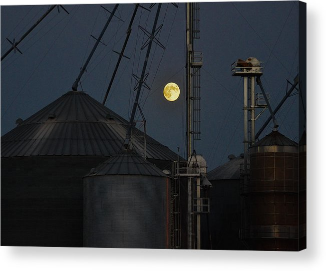 Moon Acrylic Print featuring the photograph Harvest Moon by Carl Young