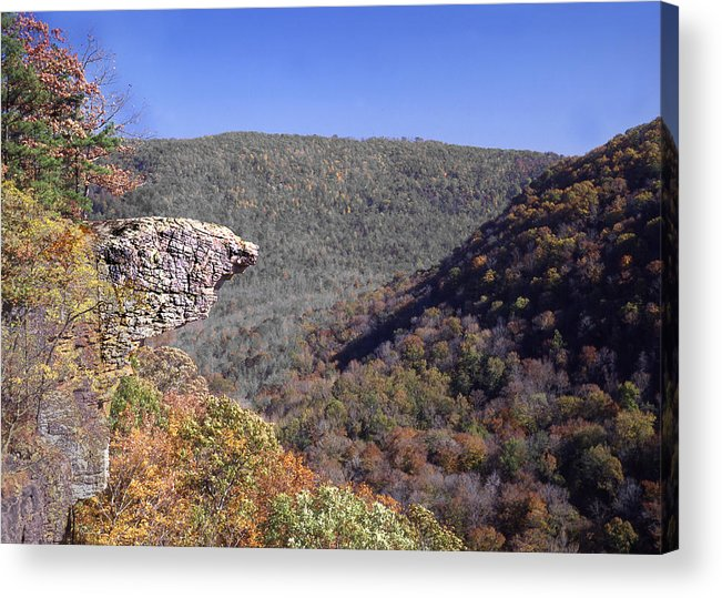 Hawksbill Crag Acrylic Print featuring the photograph Hawksbill Crag by Curtis J Neeley Jr