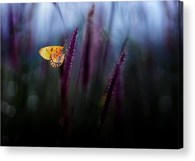Macro Acrylic Print featuring the photograph Hope by Erwin Astro
