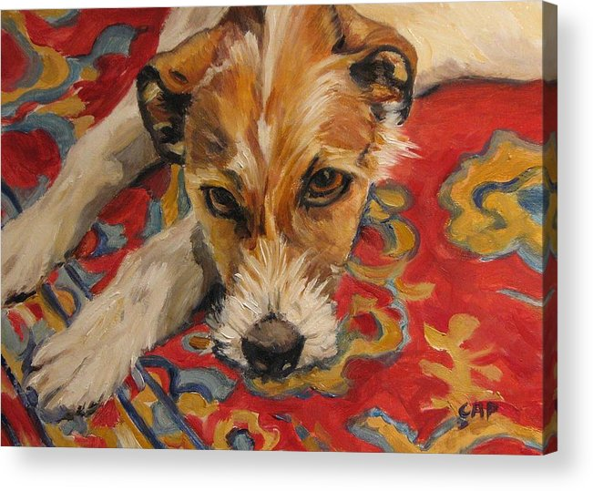 Dog Acrylic Print featuring the painting Jack Russell by Cheryl Pass