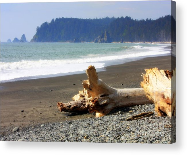 Washington State Acrylic Print featuring the photograph La Push Beach by Carol Groenen