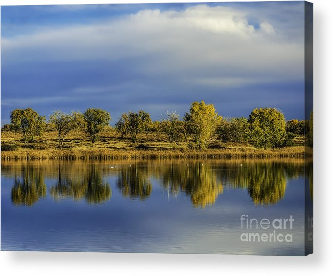Blue Sky Acrylic Print featuring the photograph Looking Glass by Bitter Buffalo Photography