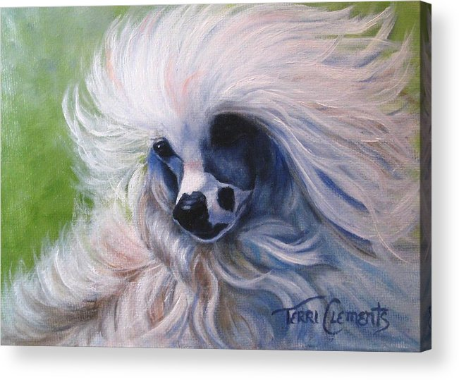 Dog Acrylic Print featuring the painting Odin In The Breeze by Terri Clements