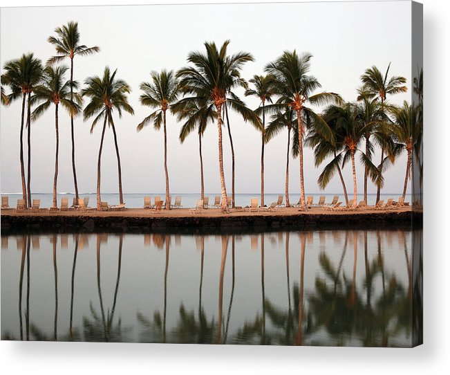 Hawaii Acrylic Print featuring the photograph Palm Trees And Beach Chairs by Dan Peak