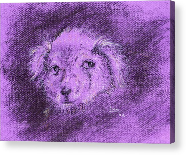 Dog Acrylic Print featuring the drawing Perro Electrico 1 by Victor Amor