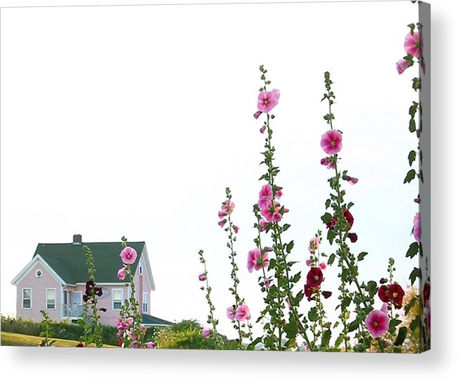 Island Acrylic Print featuring the photograph Pink House by Gerard Yates