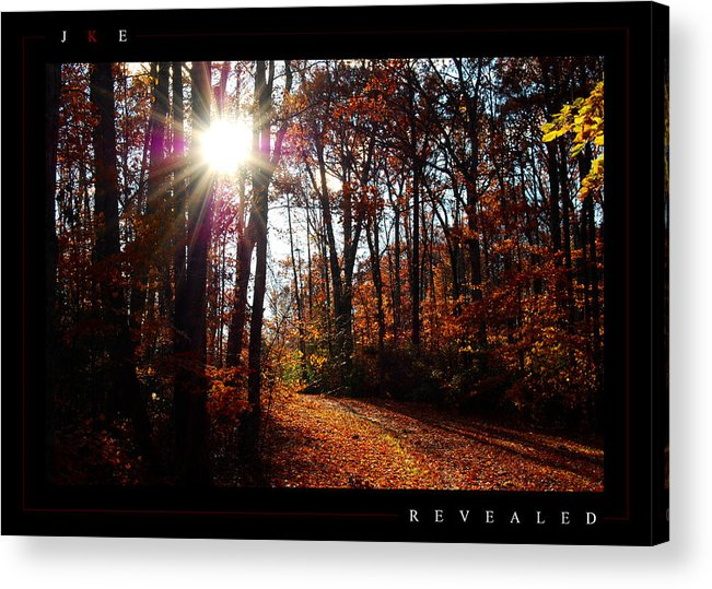 Forest Acrylic Print featuring the photograph Revealed by Jonathan Ellis Keys