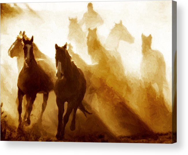 Horses Acrylic Print featuring the photograph Round Up by Nick Sokoloff