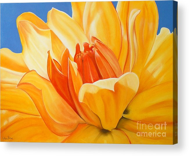 Floral Acrylic Print featuring the painting Saffron Splendour by Colleen Brown