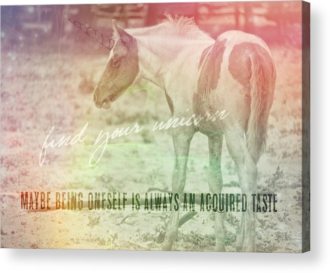 Pony Acrylic Print featuring the photograph Spotted Pony Quote by JAMART Photography
