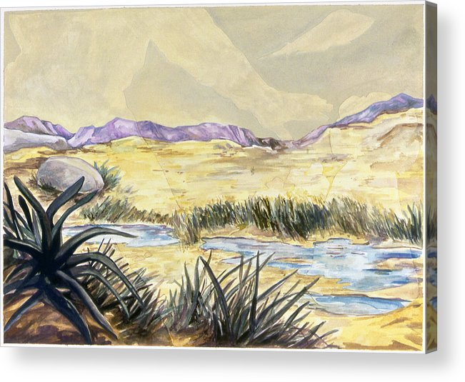 Karl Acrylic Print featuring the painting Sticker Landscape 3 Desert by Karl Frey