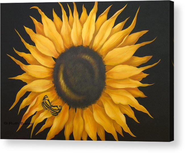 Floral Acrylic Print featuring the painting Sunflower And Butterfly by Ruth Bares