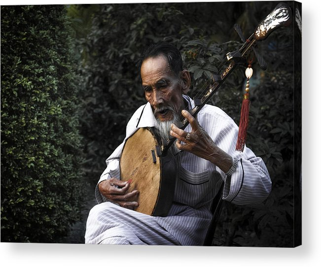 Portrait Acrylic Print featuring the photograph The Old Man Plays Zither by Son Truong