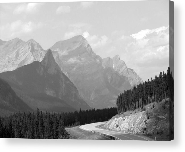 Landscape Acrylic Print featuring the photograph The Road Less Travelled by Tiffany Vest